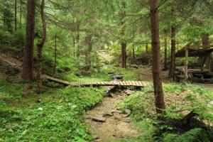 Ťapešovo Trail